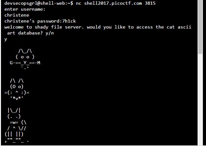 PicoCTF_Leaked_Hashes_5