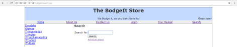 owaspbwa_bodgeit_level1_XSS
