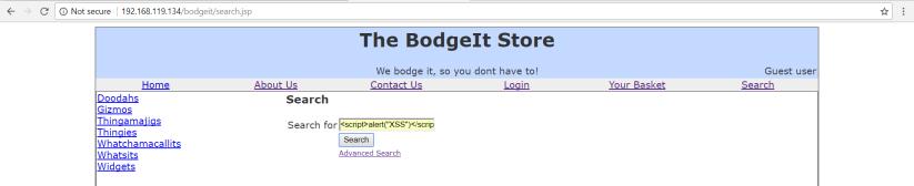 owaspbwa_bodgeit_level1_XSS_search_1