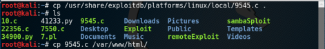 Kioptrix_copy_exploit_Level2